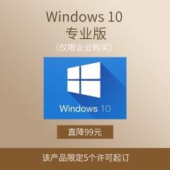 Windows 10  专业版(仅限企业购买) 电子下载版 永久授权 本地部署