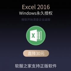 Excel 2016 电子下载版 永久授权 电子下载版 Windows