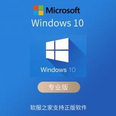 Windows 10 专业版(仅限企业购买) 电子下载版 永久授权 本地部署 电子下载版 永久授权