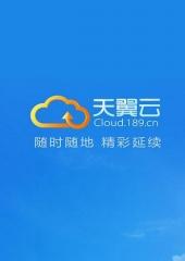天翼云-云硬盘 普通IO 包月 30GB